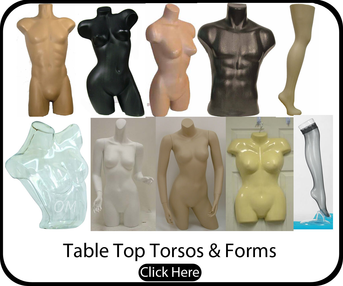 Male and Female Torsos