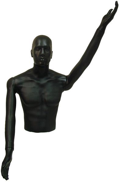 Male Standing Torso