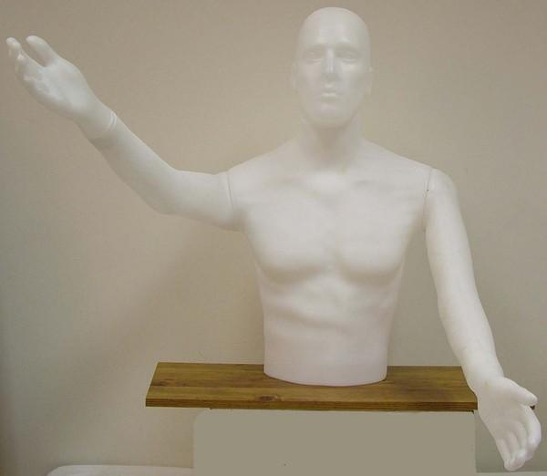 Male standing torso white