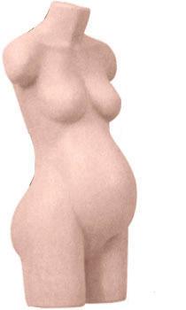 Female 3/4 Pregnant Torso