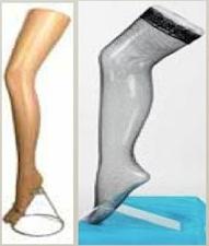 Female Sock Display