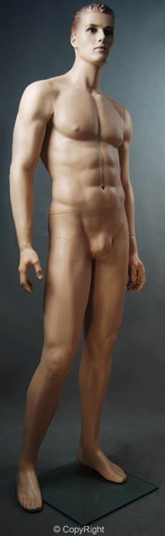 New Male FiberGlass Realistic Mannequin (GM24)