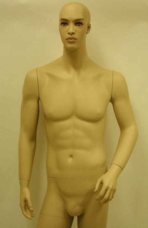 Male Fiberglass Mannequin Ethnic JDM-02