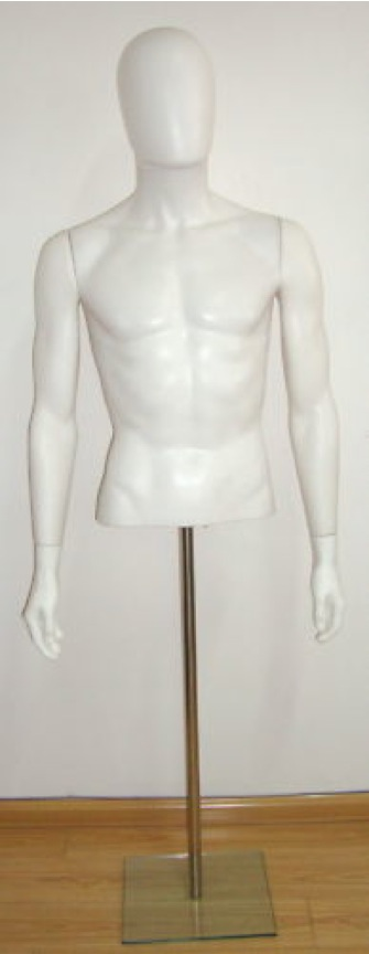 Male Fiberglass Torso Headless  With base